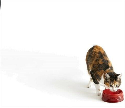 Le pet pet Microwave
